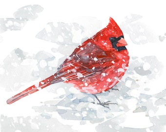 Red Cardinal in snow watercolor painting - 5x7 bird art print