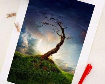Special Edition Tree Print, Fantasy Tree Art Print,  Digital Illustration, Home Decor, A4. 29.6 x 20.7 cm