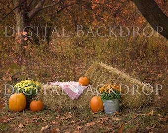 Instant Download Photography Prop Autumn Splendor Fall DIGITAL BACKDROP for Photographers Pumpkins Hay