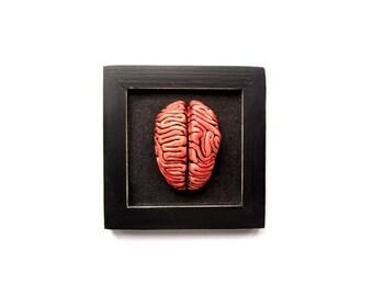 Brain sculpture, Ceramic brain sculpture, Brain wall art, Psychology gift, Creepy sculpture, Anatomical sculpture, Human brain