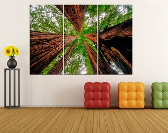 Sequoia trees canvas print extra large wall art, modern art modern canvas art, modern canvas, wall art print,  wall decor art print üc46