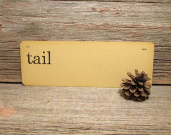 """Vintage Flash Card """"tail"""" and """"tails""""Word Card"""