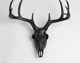 Black Deer Skull by White Faux Taxidermy / Resin Buck Animal Skull / Western Decor Animal Skull Fauxidermy / Resin Deer Skull