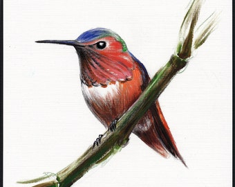 Little Hummer - Original Hummingbird Painting