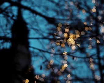 Abstract Bokeh Photography, Prague Architecture, Modern circles bokeh trees sparkles, Deep Blue Gold sparkles print 8x12