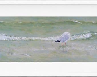 seagull Limited Edition Art Print, coastal wall art, seagull painting, bird art, seagull art, seagull print, beach house art