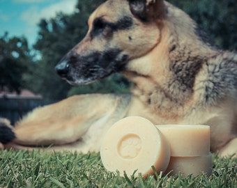 Healthy Pup - Dog Shampoo - All Natural - Shampoo with 6 Essential Oils to Repel Insects!