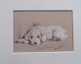 "Poodle dog print by Lucy Dawson dated 1935 in 10""x8"" mount ready to frame"