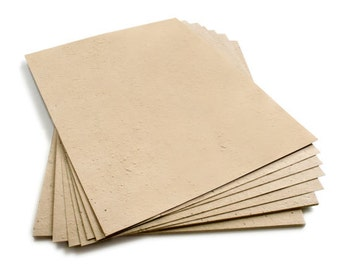"""10 Latte Sheets of Wildflower Plantable Seed Paper - 8.5 x 11"""" - 85lb - Handmade - Rustic - Crafting"""