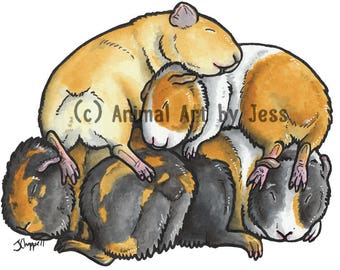 GUINEA PIGS (cavies / cochon d'inde), perfect gifts for cavy lovers - sleepy pile cartoon by Yorkshire animal artist Jess Chappell
