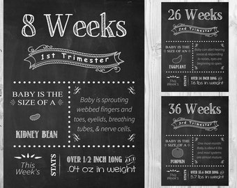 ALL 17 Printable File Pregnancy Chalkboard  Weeks 18x24 - from 1st, 2nd, 3rd  Trimester chalkboard pregnancy week by week tracker