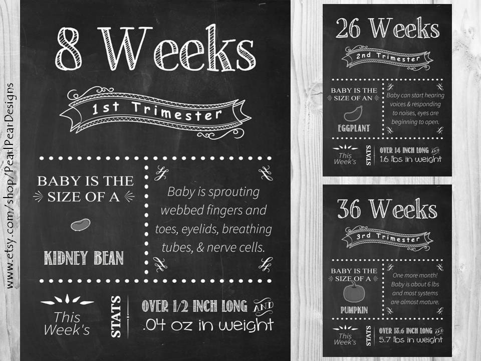 all 17 printable file pregnancy chalkboard weeks from 1st