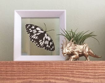 Custom Single Butterfly Papercut