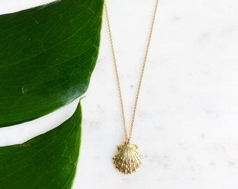 Gold Plated Seashell Necklace on 16 Inch Chain