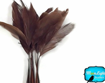 Stripped Feathers, 1 Yard - BROWN Stripped Coque Tail Feathers Wholesale (bulk) : 3898