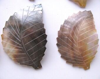 "Leaf shaped pendant bead, Black Lip shell, 2 3/4"" by 2"" - # 35"