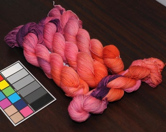 Tropical Studies on Discourse SW BFL Sock - 450 yd