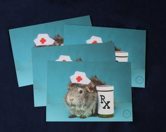 Guinea Pig Get Well Soon Cards