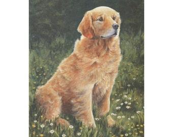 Golden Retriever Print by B A Crosby