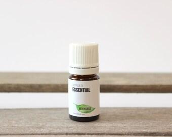 Ravensara Essential Oil - Aromatherapy Essential Oils, Wild Ravensara Essential Oil, Not MLM Essential Oils, Hand Bottled Essential Oil