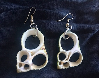 Shell Cross Section Earrings
