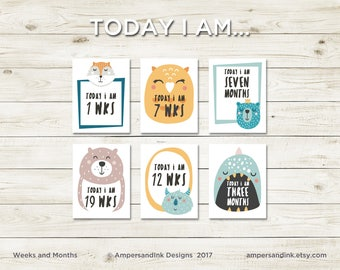 Milestone Flash Cards - Today I am... Months, Photo Prop, Funky Animals, 4.25 x 5.5 cards