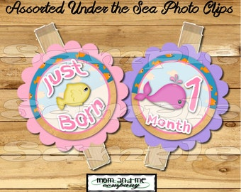 Baby Girl First year photo clip banner newborn to 12 months first birthday 12 month banner first year banner under the sea RIBBON INCLUDED