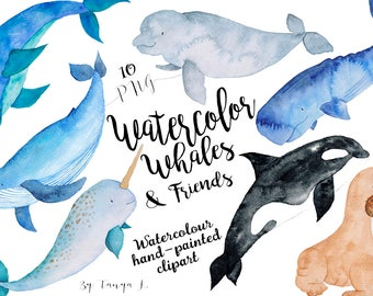 Whale Clipart, Nautical Clip art, Watercolor Clip art, Hand-painted clipart, Sea animals watercolor, Kids clipart, Commercial Use