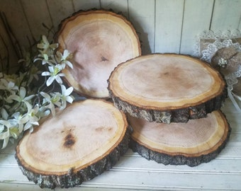 "4 pc. Lot 10-12"" Red Oak Wood Slices Slabs Live Edge Bark Rustic Wedding Centerpiece Placemats Woodland Table Decor"