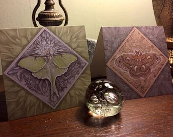 Boxed Cards: Luna and Cecropia moth, set of 8