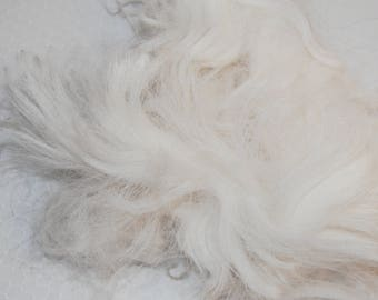 Karakul Sheep Wool Locks for Spinning, Felting, Santa Beards, Doll Hair, Doll Wig, Cream White with very faint traces of gray 1 oz.