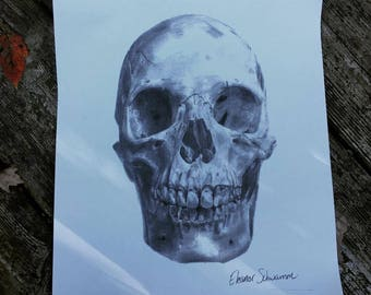 Skull Drawing Print