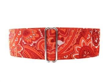Orange Martingale Dog Collar, Paisley Martingale Collar, Paisley Dog Collar, 2 Inch Martingale Collar, Orange Dog Collar, Sighthound Collar