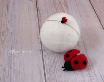 RTS Ladybird set felted newborn props, felted tieback and stuffy ladybug photography props