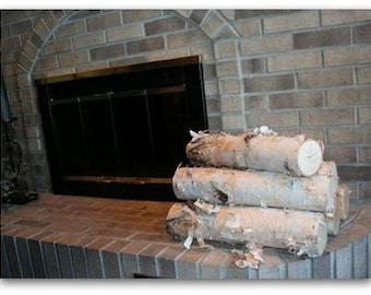 Large Fireplace WHITE BIRCH LOG Set