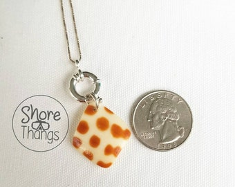 Junonia Sea Shell - Sterling Silver Nautical Necklace