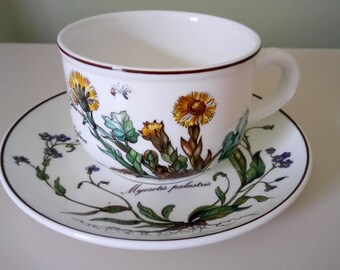 Villeroy And Boch Botanica Cup And Saucer