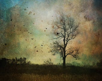 Rhythm of Nature - surreal landscape photo PRINT, ethereal home decor, moody sky art, dramatic spiritual tree birds magic magical mystical