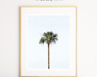 Palm Tree Print, Palm Tree Blue Sky, Blue & Green, Tropical Wall Art, Beach House Decor, Large Colour Poster, Modern Minimalist Photography