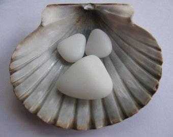 Bulk Seaglass Milk Glass Genuine Beach Glass Jewelry Making Quality Art Supply Beach Lot Earrings Pendant Necklace Set