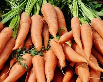 Danver's half-long carrot seeds - Heirloom Carrot Seed, Organic Carrot Seed, Carrot Danvers, Sustainable Seeds, Grow your own, Easy to grow
