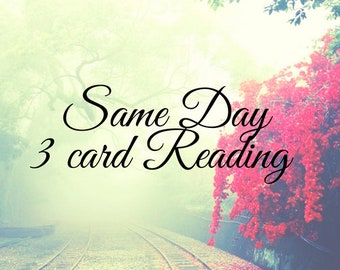 Same day 3 card reading