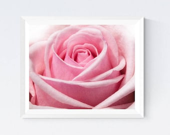 Pink rose poster, pink rose print, blush rose photo, rose photo, pink rose, rose wall decor, dreamy rose art, bedroom wall art, rose print