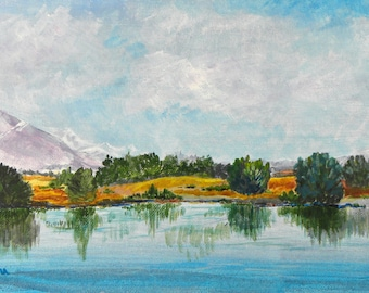 Acrylic Painting OOAK Mackenzie District, New Zealand