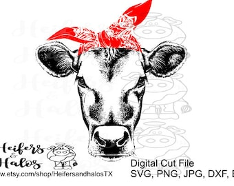 Bandana heifer cow - svg, pdf, png, eps, dxf, studio3 cut file for cricut and silhouette.  Great for t-shirts, decals, cup designs
