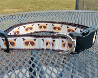 Grumpy cat dog collar