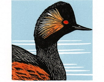 Black-necked Grebe Linocut Print Hand-coloured Limited Edition