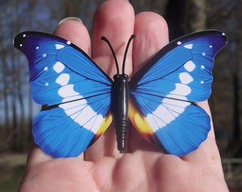 1 BUTTERFLY DECORATION, MULTICOLORED BLUE REFRIGERATOR DECOR. MAGNETIC. 8, 6 X 5, 9 cm. N ° 2