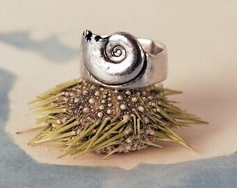 Broken Spiral Ring