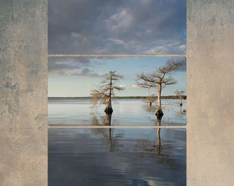 Trees at Lake Cloudy Sky Color Triptych Metal Wall Art